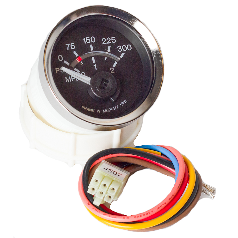 Electric Gage and Swichgage 05702405 EGS21P-100-12